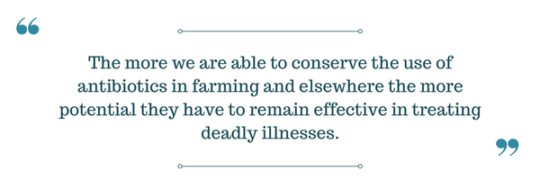 Niman Ranch antibiotic quote.png