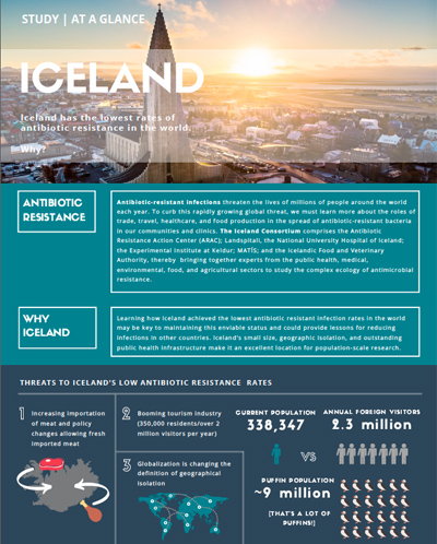 iceland for website 2.jpg